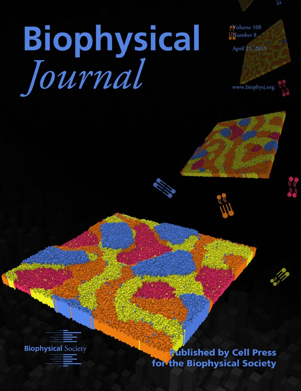 research papers on thermodynamics of protein membrane Cytosolic fatty acid binding proteins catalyze two distinct steps in membrane-active fabps interact directly with membranes during exchange of fatty acids between the protein binding site and the membrane neoplasm proteins thermodynamics tumor suppressor proteins substances.